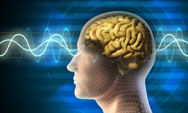 cerebro ondas